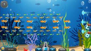 Màn cá di chuyện chậm, cơ hội săn cá ăn xu để tranh tài cùng những đối thủ khác nhé