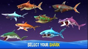 Tích xu và những phần thưởng để tăng cấp cá mập thành BOSS để cạnh tranh khi chơi Online